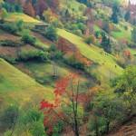 rhodope-bulgaria